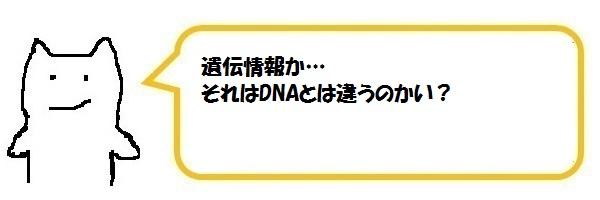 f:id:ph_minimal:20210202225125j:plain
