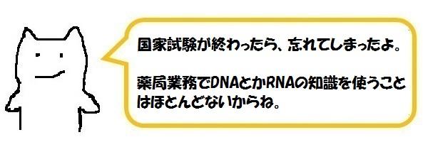 f:id:ph_minimal:20210202225213j:plain