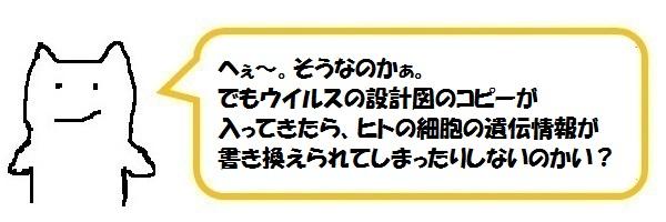 f:id:ph_minimal:20210202225710j:plain