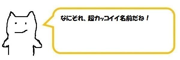 f:id:ph_minimal:20210202225748j:plain
