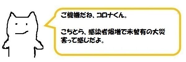 f:id:ph_minimal:20210821173035j:plain