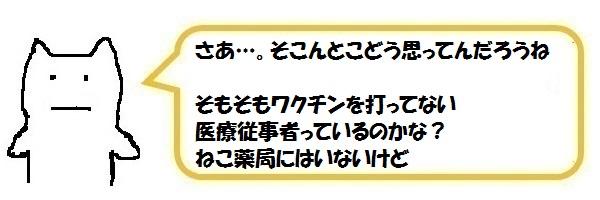 f:id:ph_minimal:20210821200556j:plain