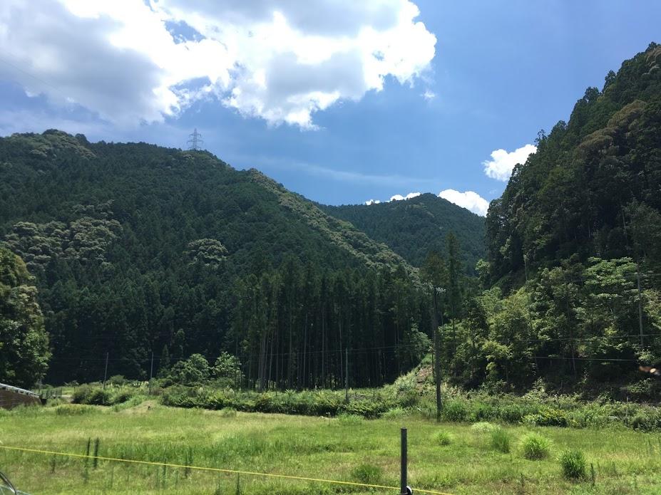 熊野に行ってきたの画像