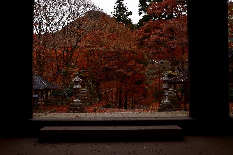 f:id:photo-no-wa:20171203001059j:plain