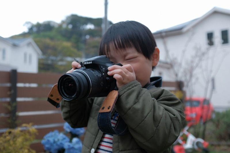 f:id:photo-no-wa:20200423063812j:plain