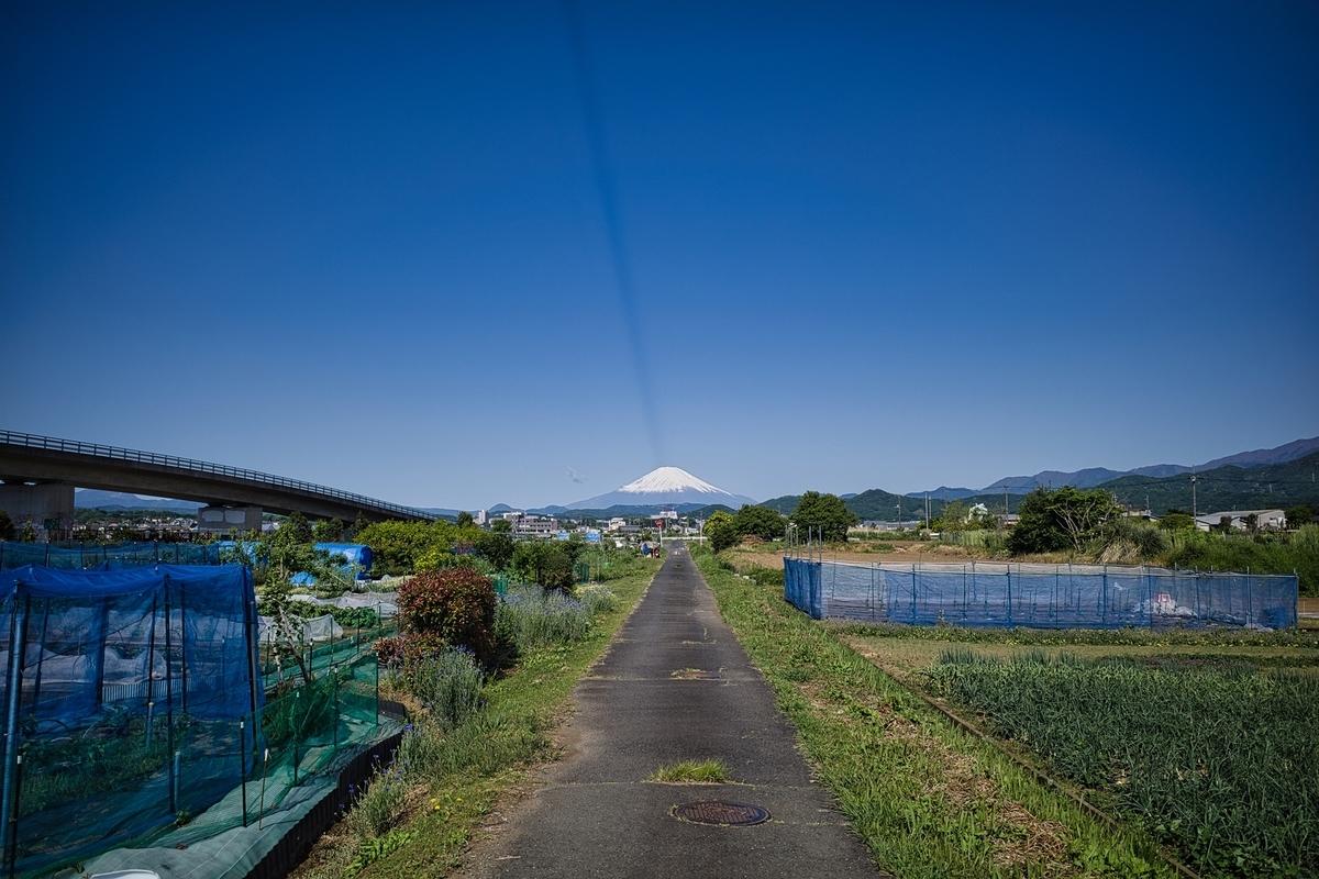f:id:photo_sanpo:20210503144608j:plain