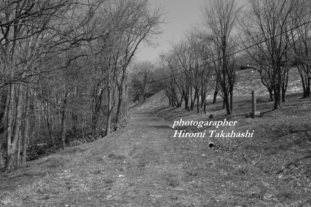 f:id:photographer_Hiromi:20170504092956j:plain