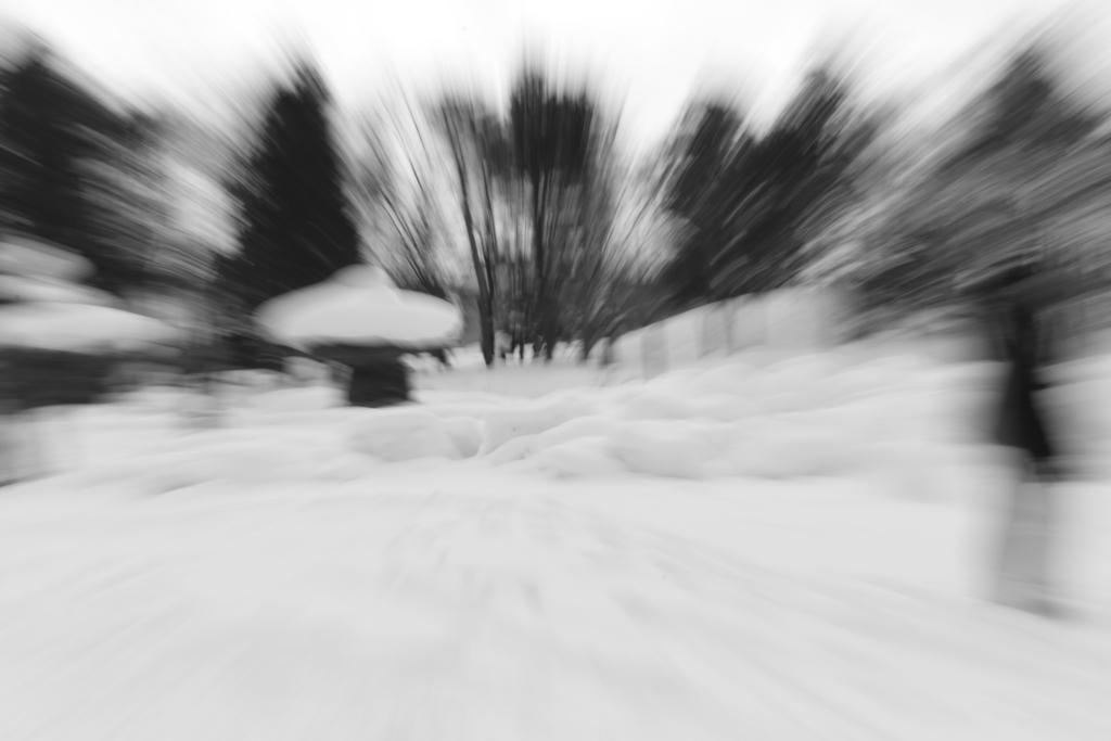 f:id:photographer_Hiromi:20180214112621j:plain
