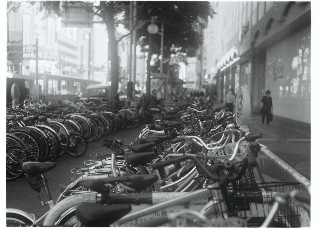 f:id:photographer_Hiromi:20190301134406j:plain