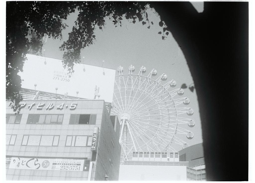 f:id:photographer_Hiromi:20190301135035j:plain