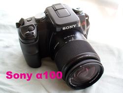 f:id:photolifenet:20200702204345j:plain