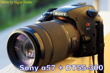 f:id:photolifenet:20200703192215j:plain