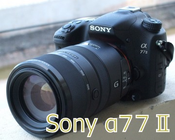 f:id:photolifenet:20200915212144j:plain