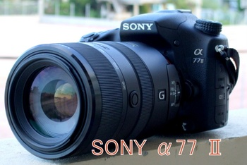 f:id:photolifenet:20201014204131j:plain