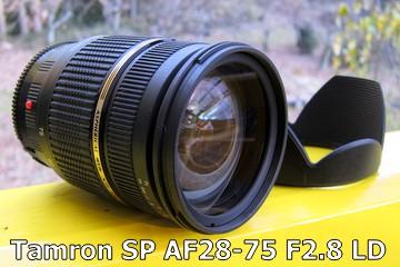 f:id:photolifenet:20210707173712j:plain