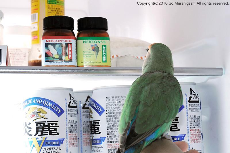 f:id:photosgo:20100706142124j:image:W450