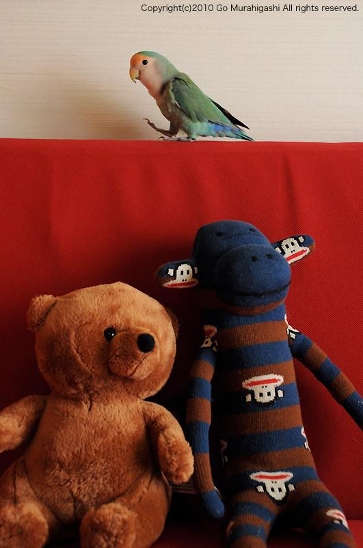 f:id:photosgo:20100718110035j:image:w450