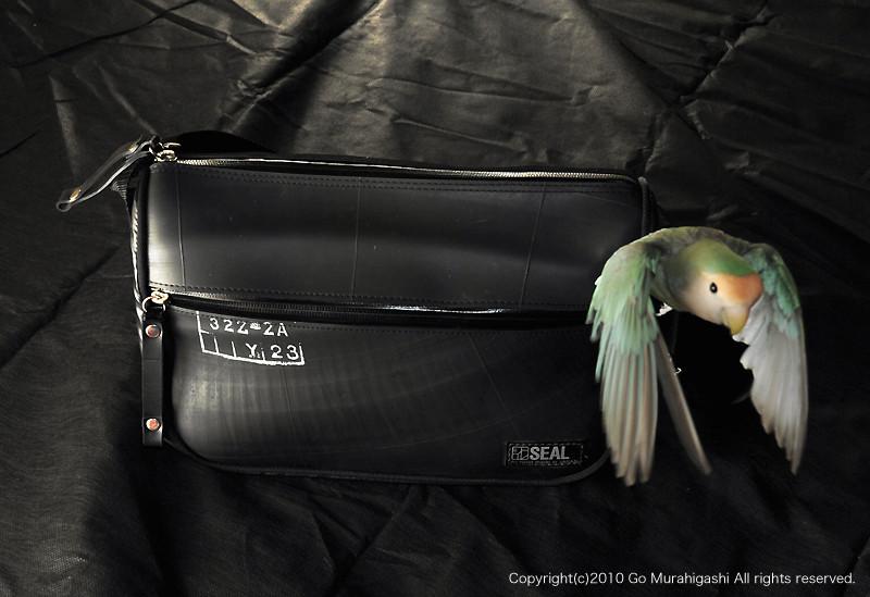 f:id:photosgo:20100819154423j:image:W450