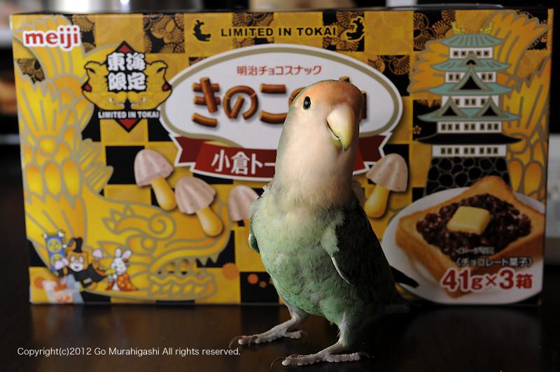 f:id:photosgo:20120112231339j:image:w450