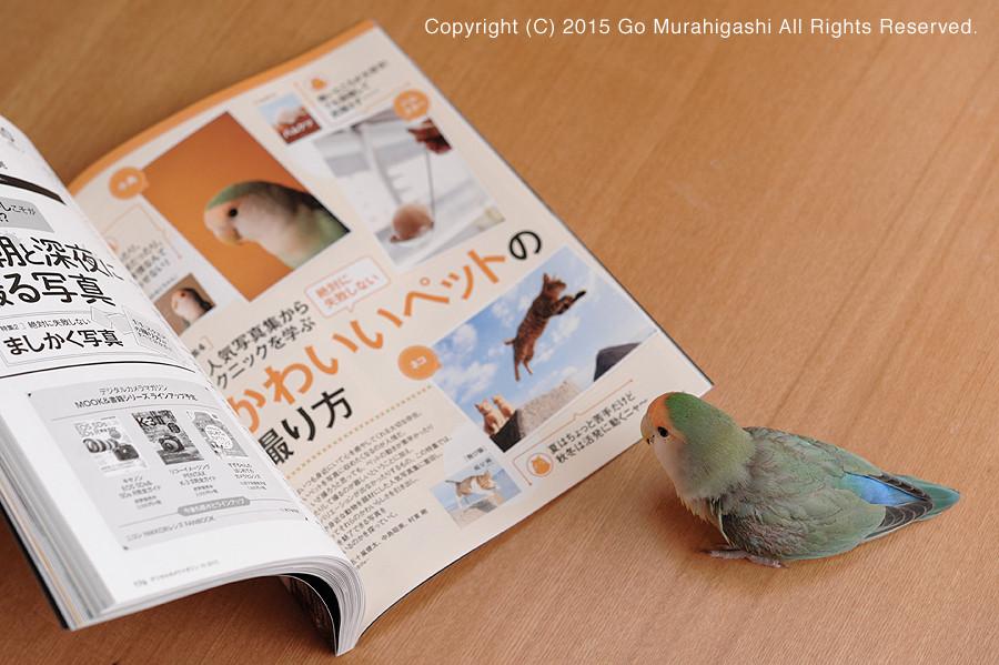 f:id:photosgo:20150920132823j:image:W450