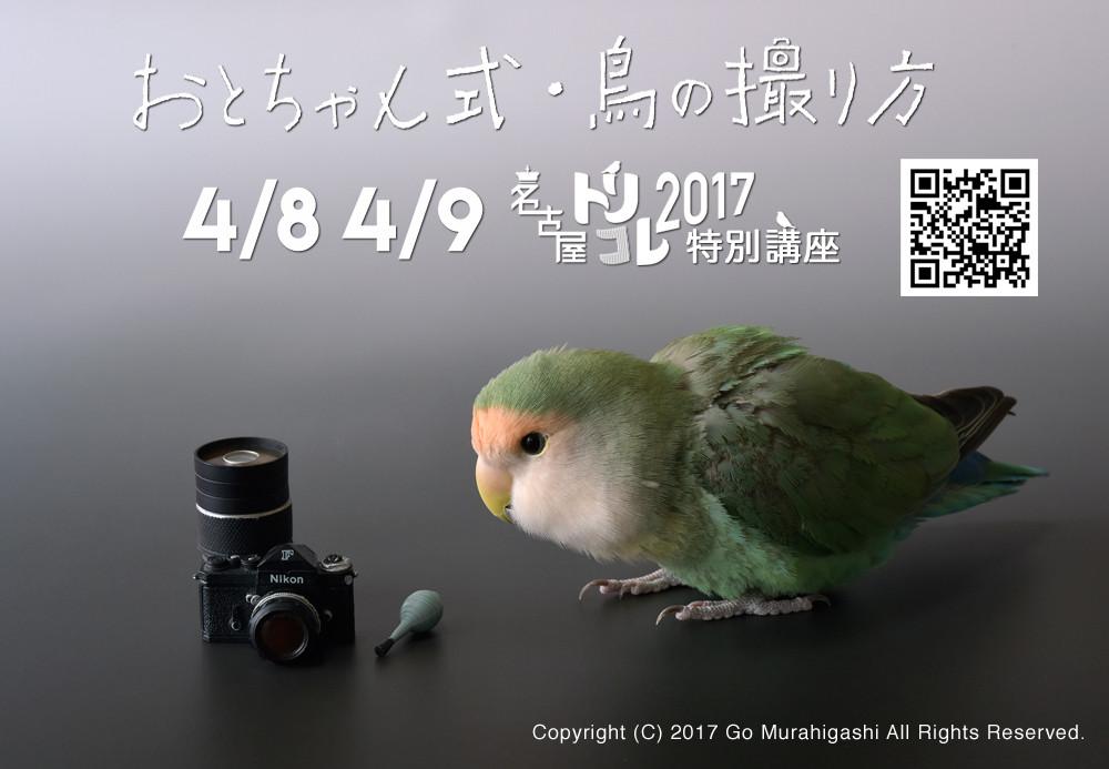 f:id:photosgo:20170323232934j:plain