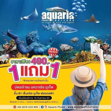 f:id:phuket_bluemarine:20200912115439j:plain
