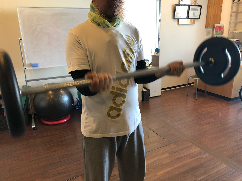 f:id:physicalist:20181026135136p:image