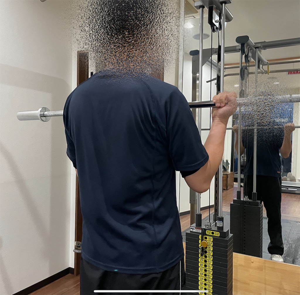f:id:physicalist:20210730000247j:image