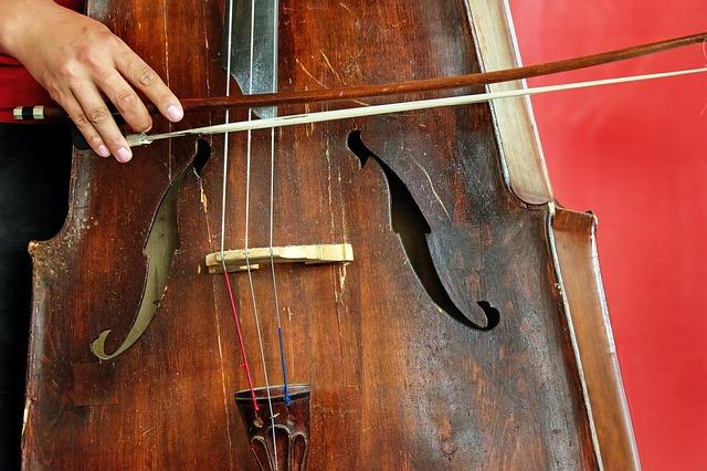 チェロの楽器画像