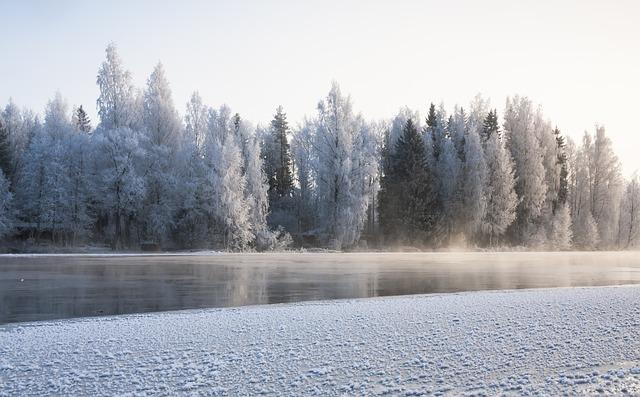 フィンランドの荒野