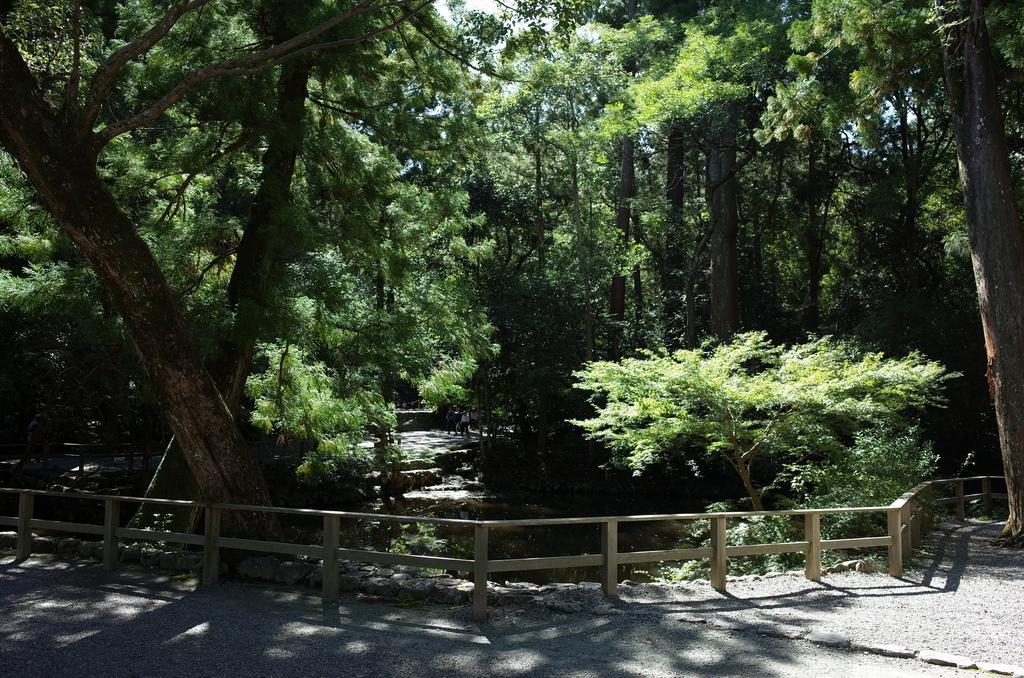 伊勢神宮外宮の自然
