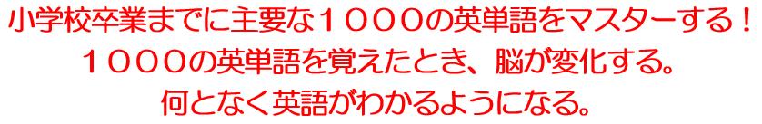 f:id:picoyonezawa:20170117104931j:plain
