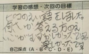 f:id:picoyonezawa:20170117120259j:plain