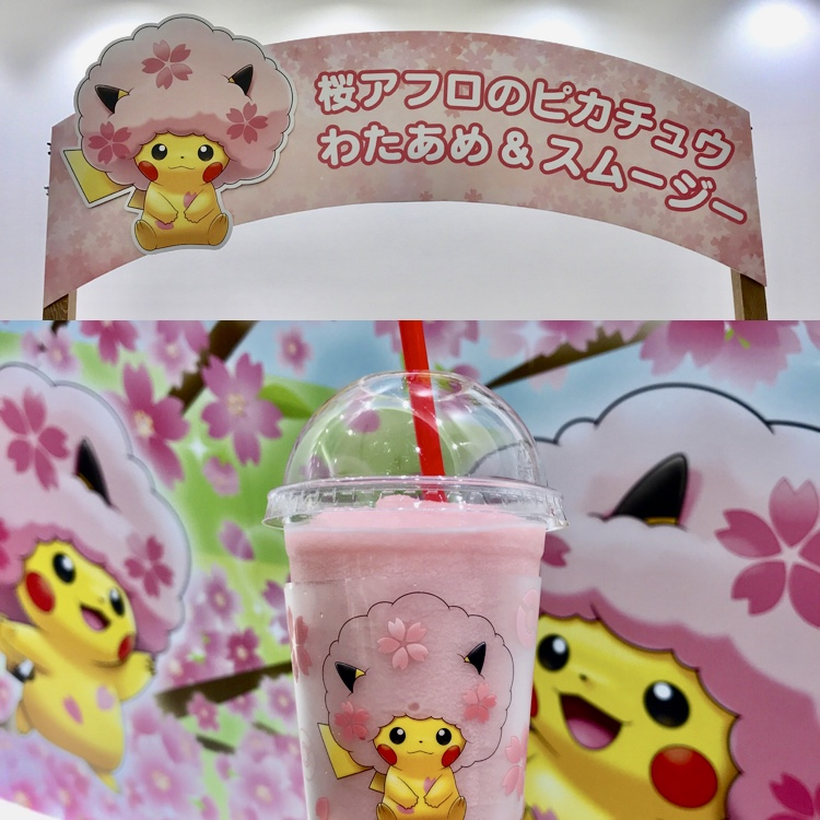 f:id:pikachu_pcn:20190317204341j:plain