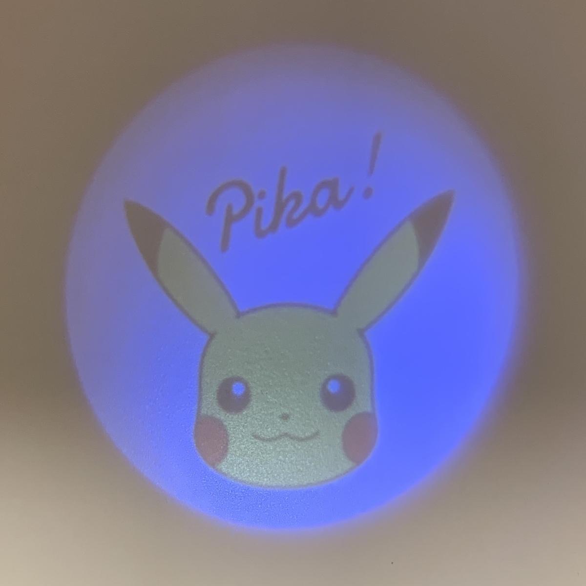 f:id:pikachu_pcn:20190426215836j:plain