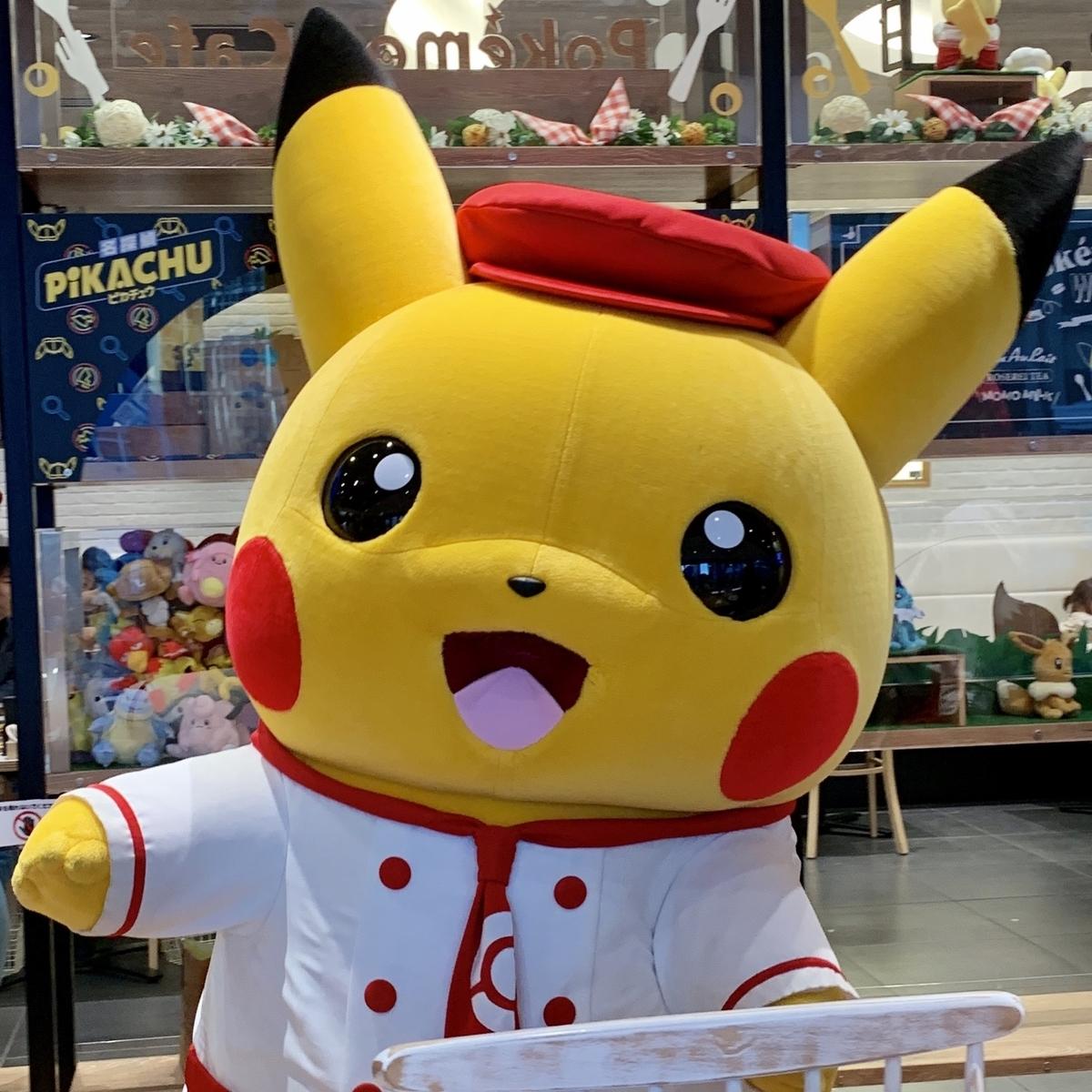 f:id:pikachu_pcn:20190530202816j:plain
