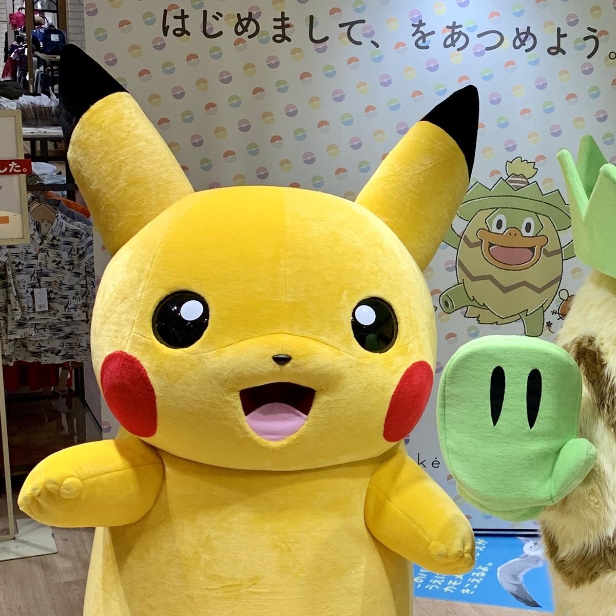 f:id:pikachu_pcn:20190831201201j:plain