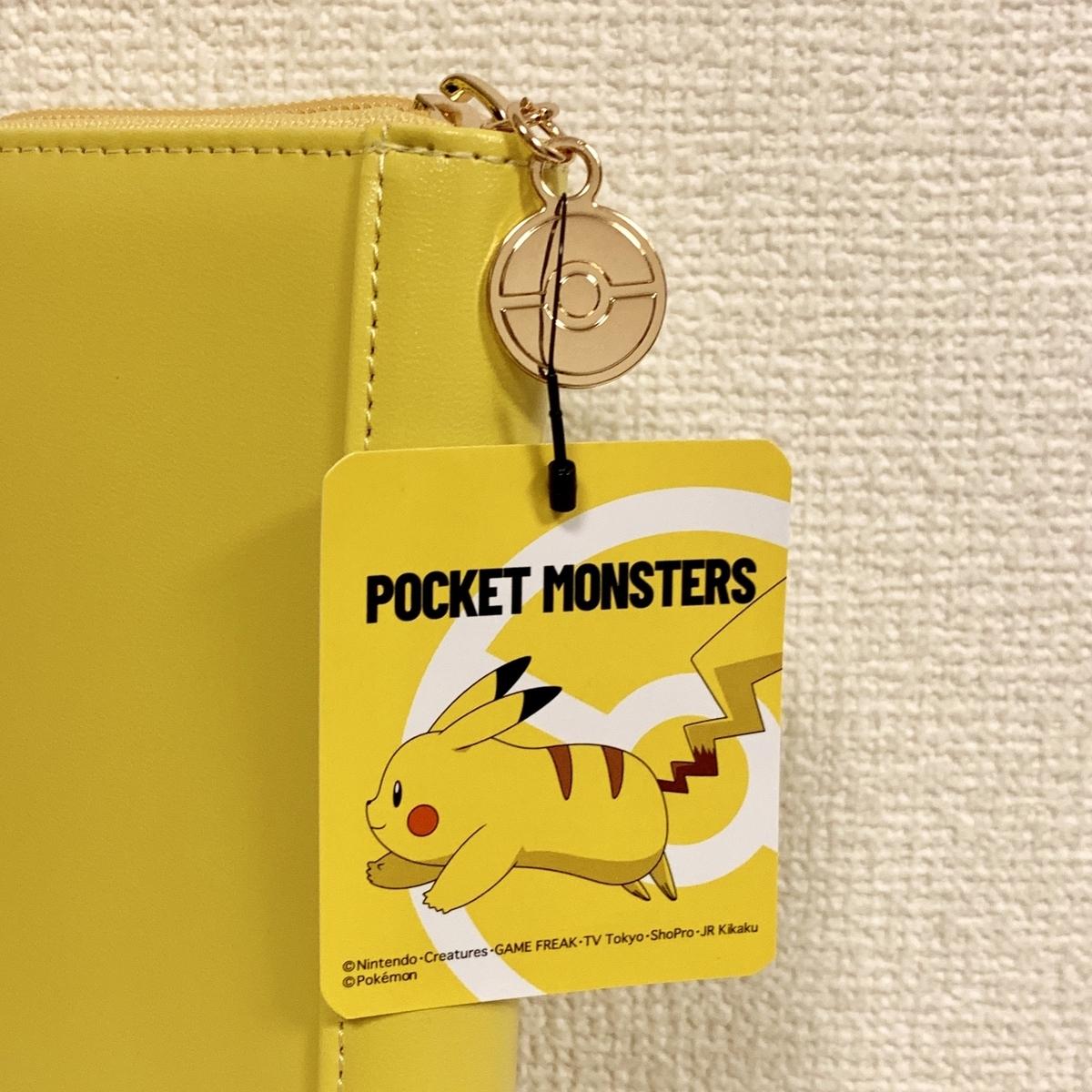 f:id:pikachu_pcn:20191130000520j:plain