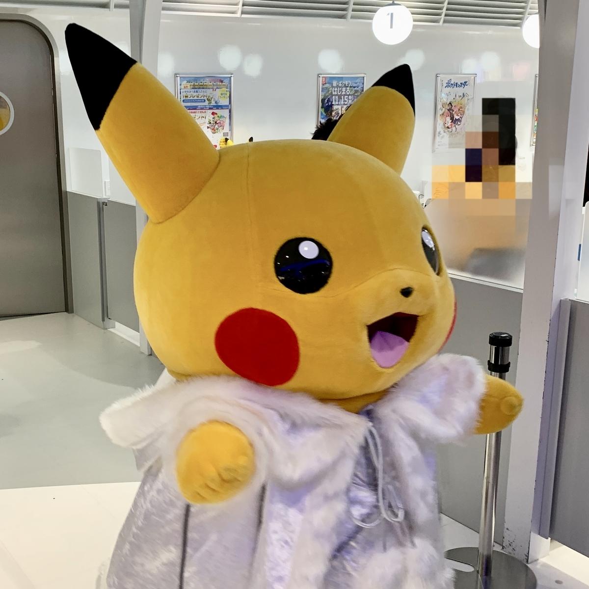 f:id:pikachu_pcn:20191201184915j:plain