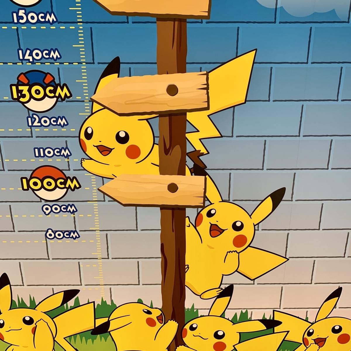 f:id:pikachu_pcn:20200606185247j:plain