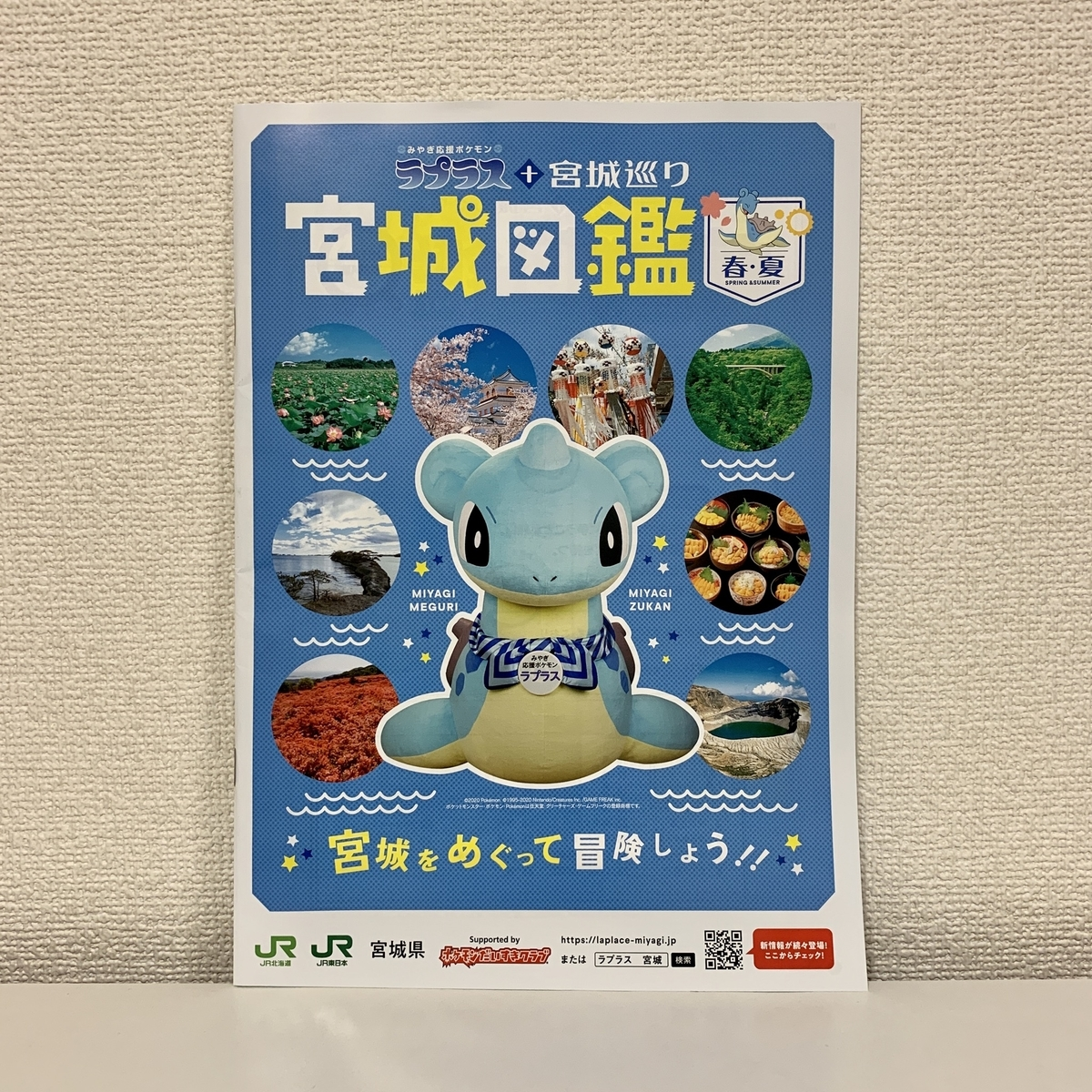 f:id:pikachu_pcn:20200625214424j:plain