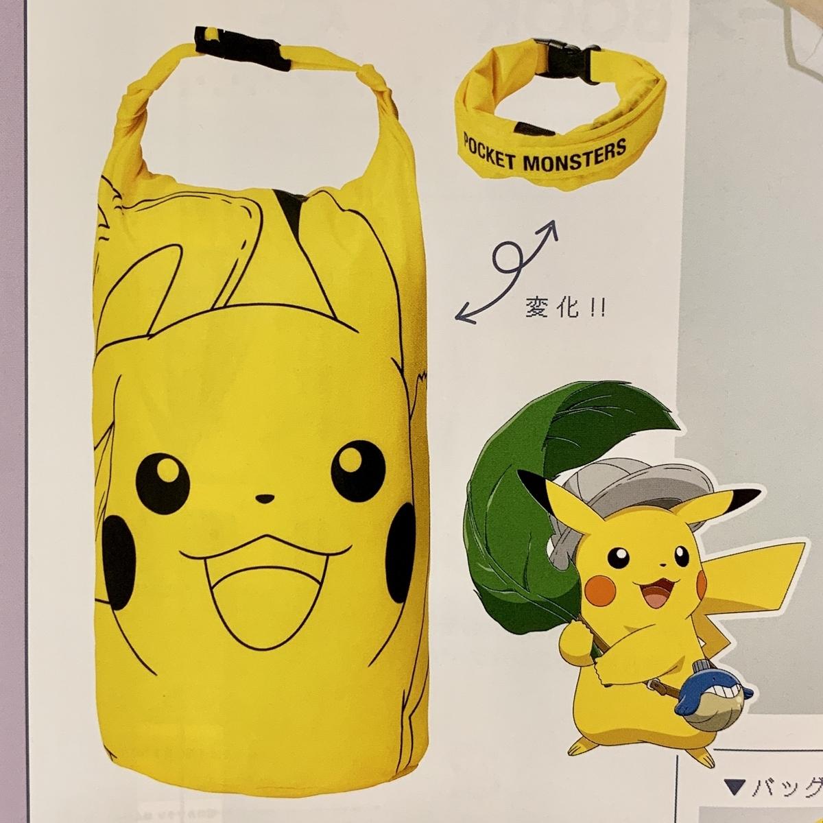 f:id:pikachu_pcn:20200702222300j:plain