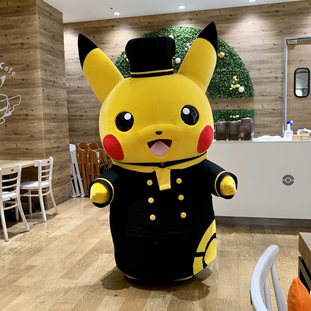 f:id:pikachu_pcn:20200811224624j:plain