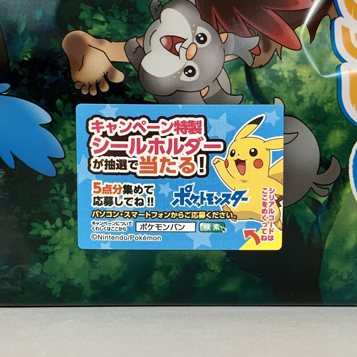 f:id:pikachu_pcn:20200921205253j:plain
