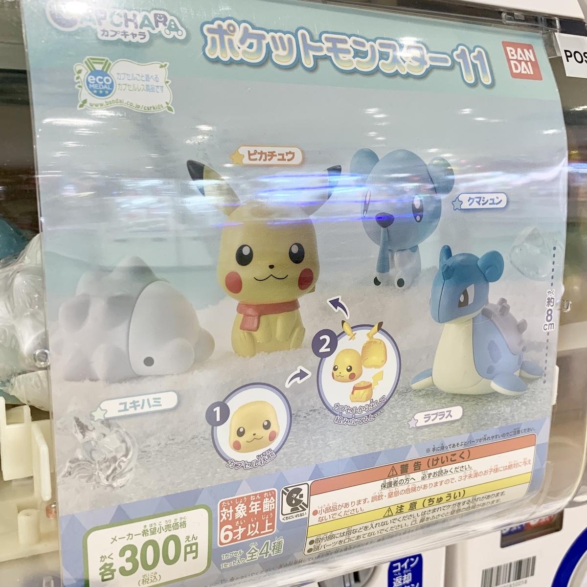 f:id:pikachu_pcn:20201126185312j:plain