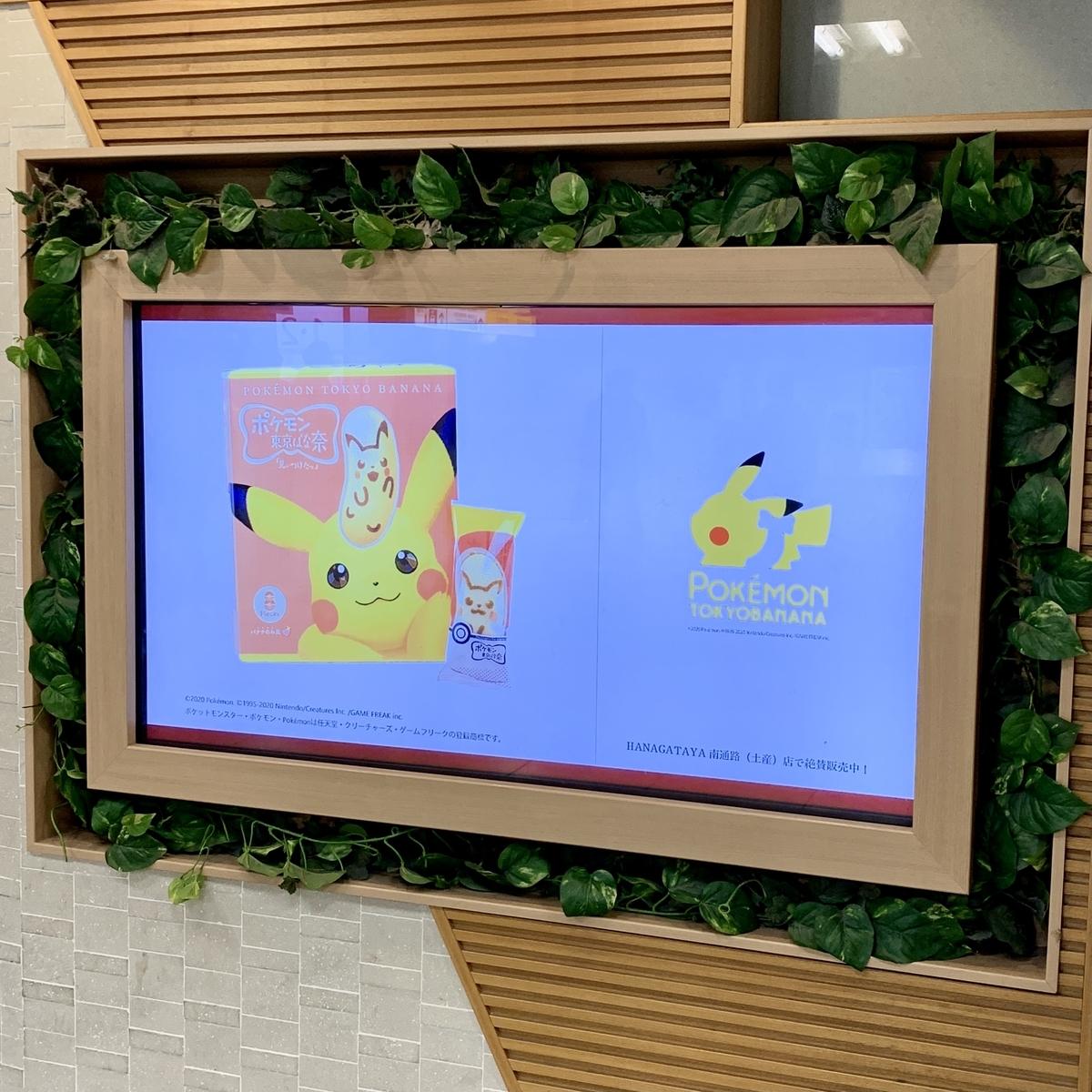 f:id:pikachu_pcn:20210115212840j:plain