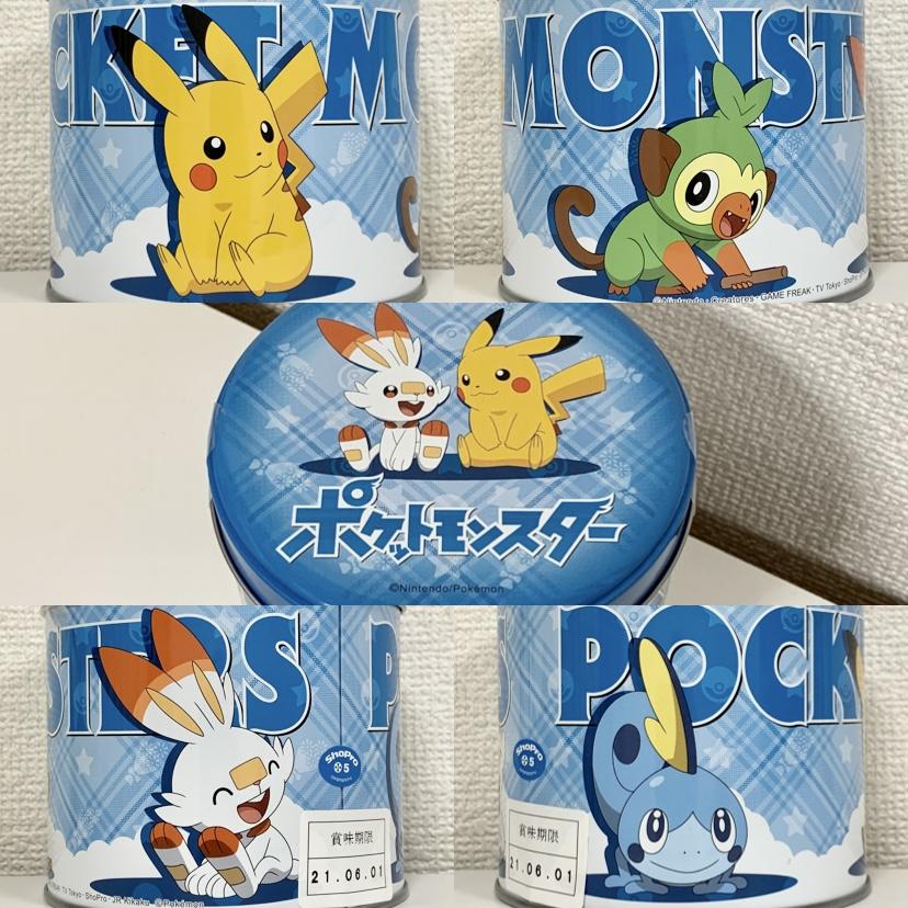 f:id:pikachu_pcn:20210125185738j:plain
