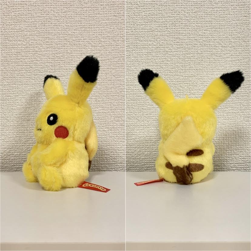 f:id:pikachu_pcn:20210129202107j:plain