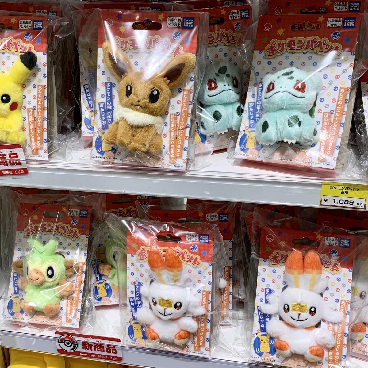 f:id:pikachu_pcn:20210129202121j:plain