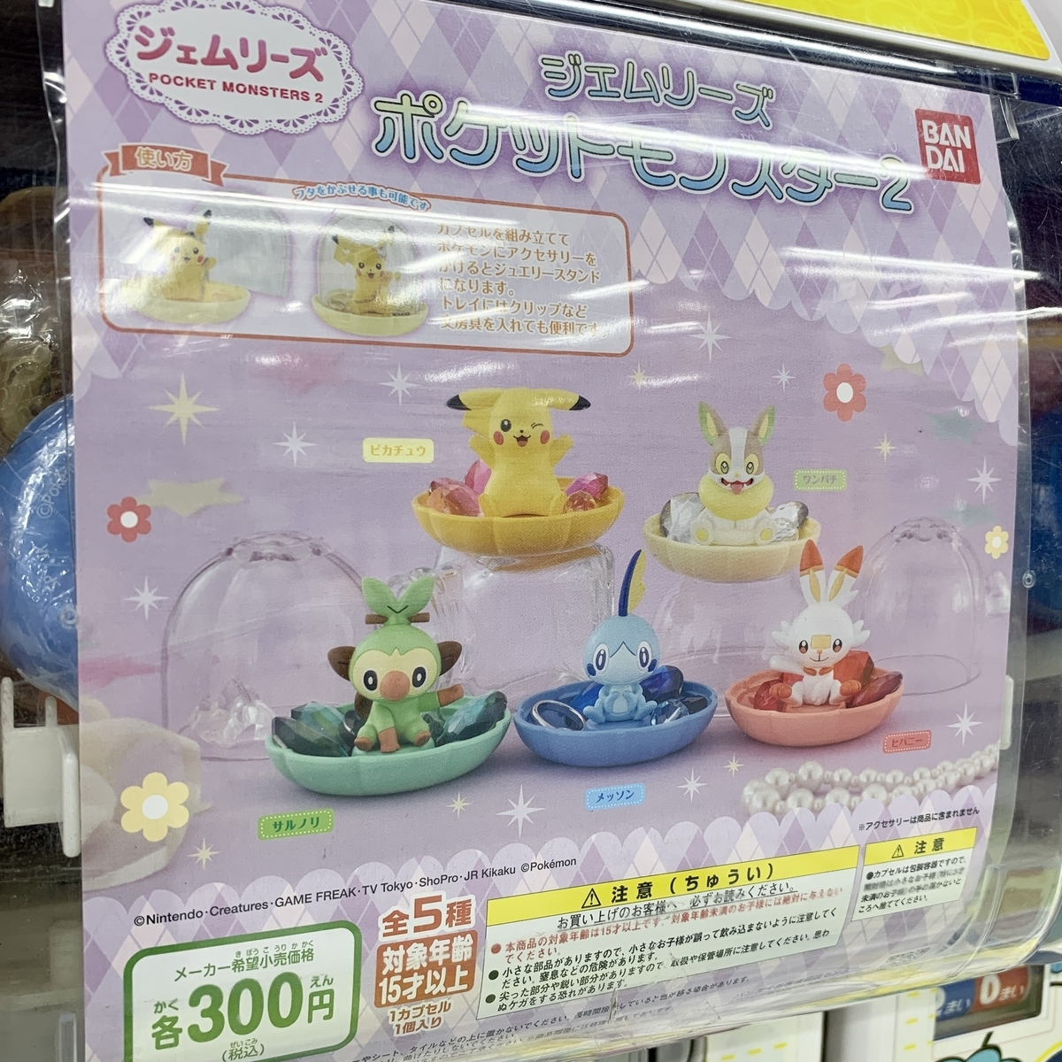 f:id:pikachu_pcn:20210218185333j:plain